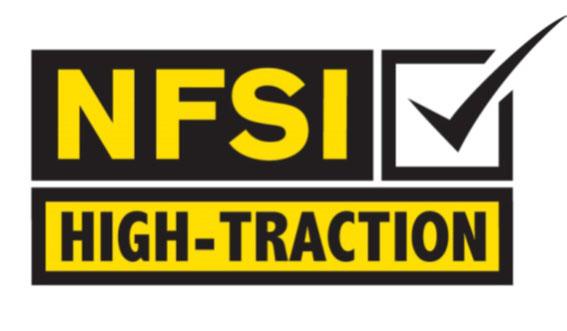 NFSI Logo